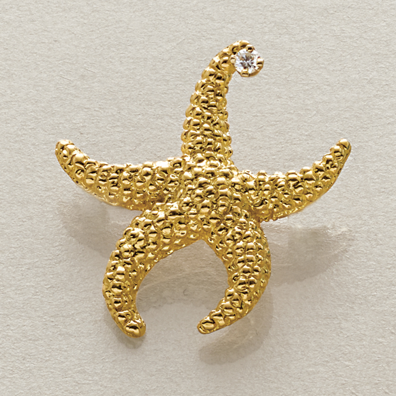 Starfish with Diamond Brooch