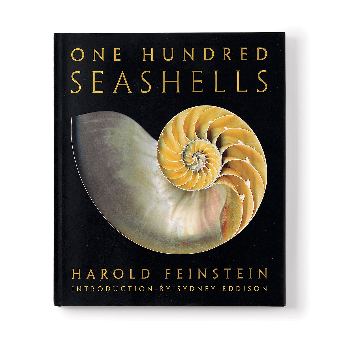 One Hundred Seashells Book