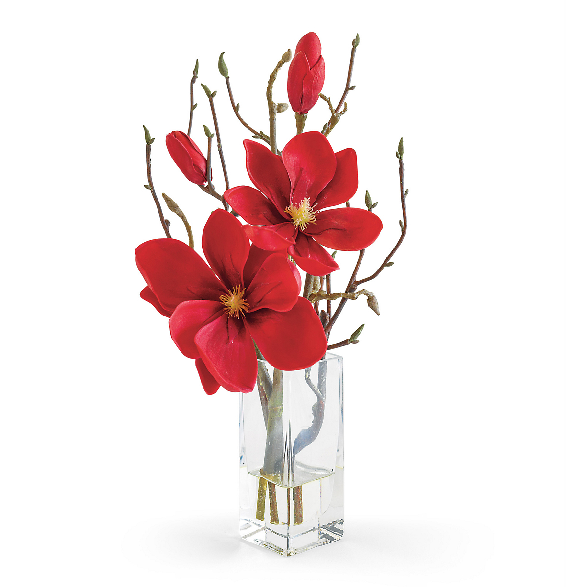 Red Magnolia Branch In Vase