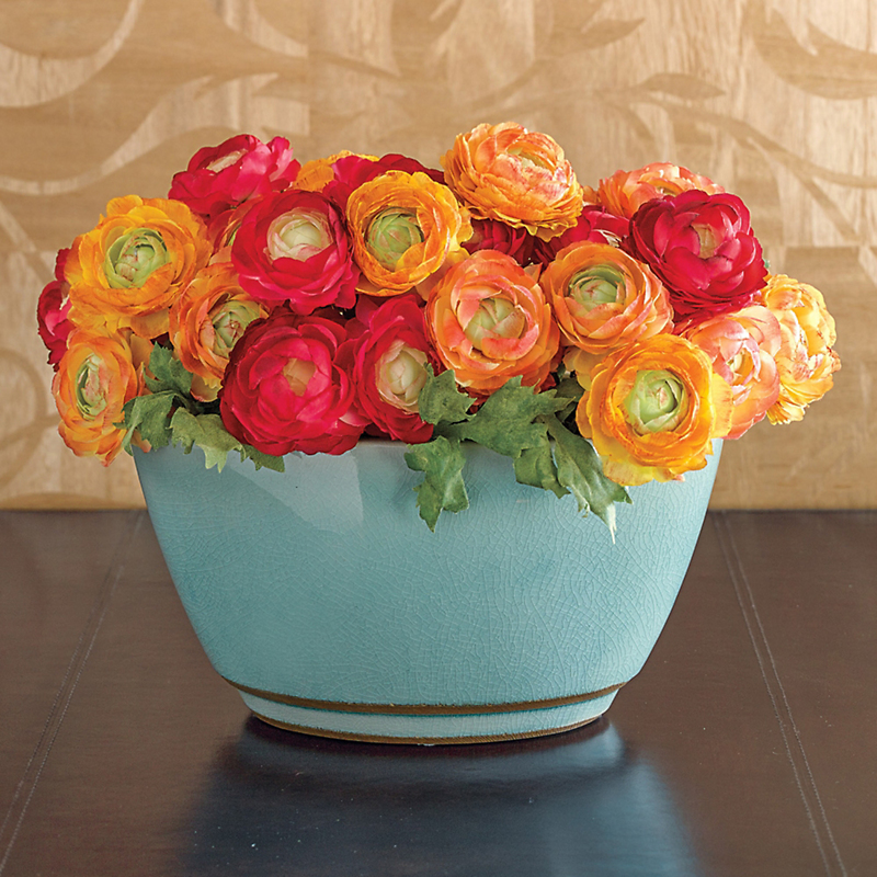 Sunset Ranunculus