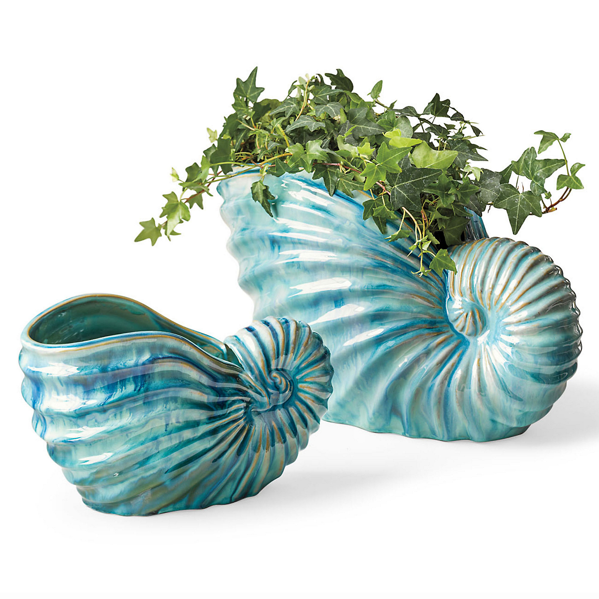 Turquoise Shell Cachepots