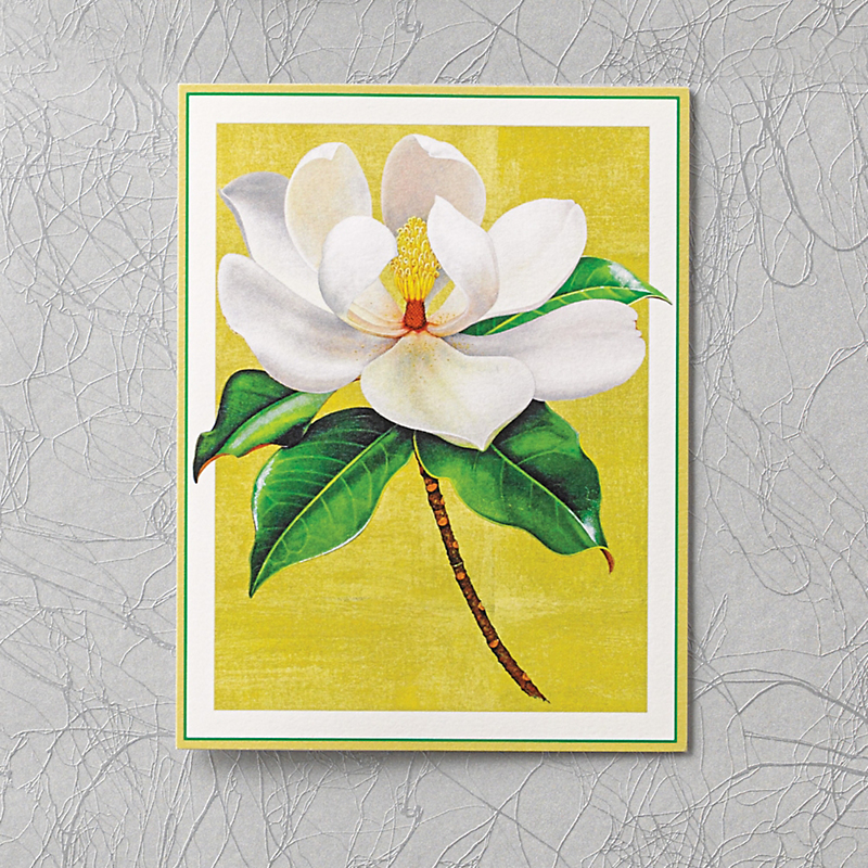 Caspari Personalized Magnolia Bloom Cards, Box Of 50