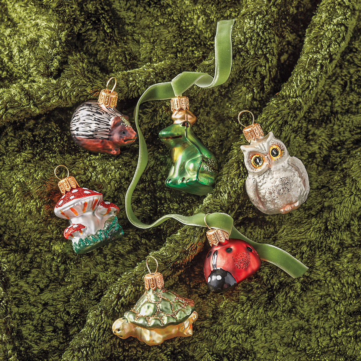 Garden Creatures Christmas Ornaments, Set Of 6