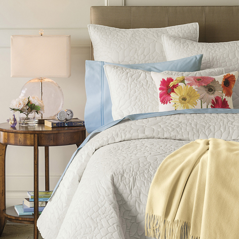 Chrysanthemum Bedding Collection
