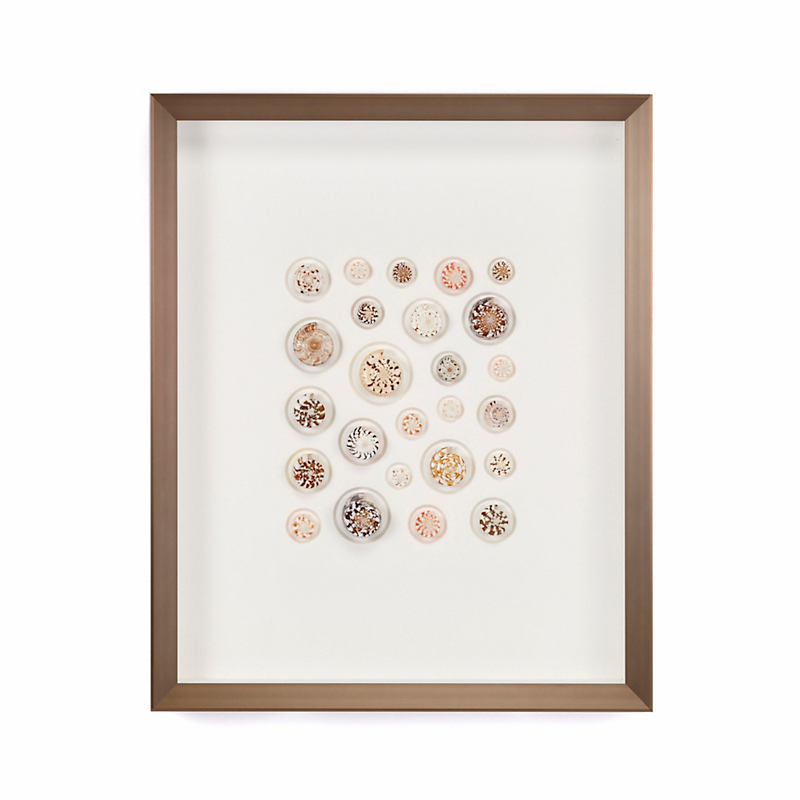 Pheromone Cone Shells Artwork