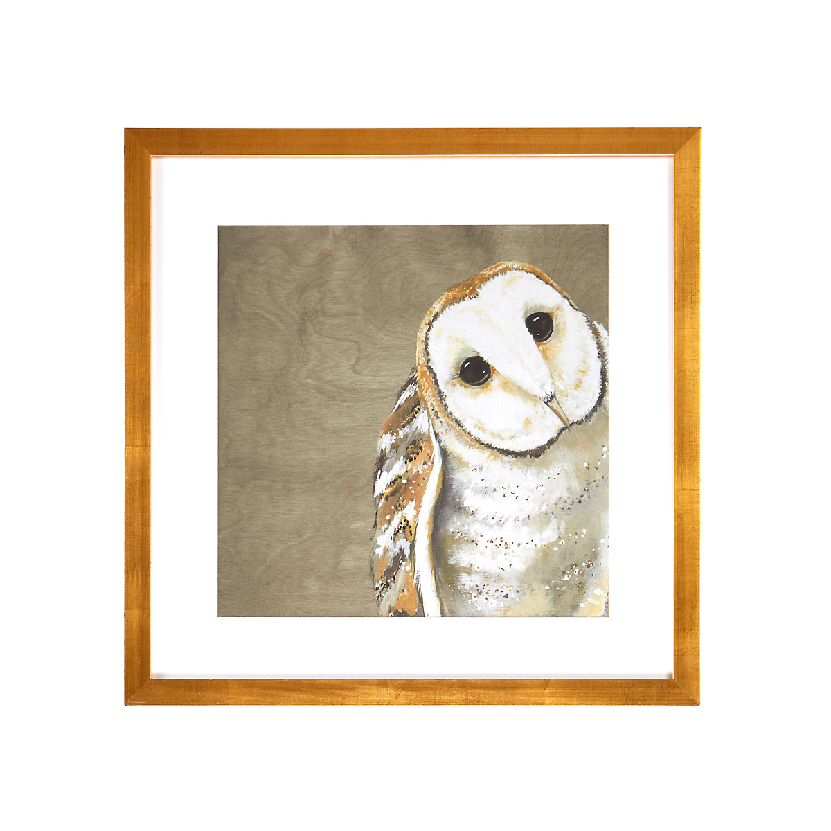 European Barn Owl Artwork