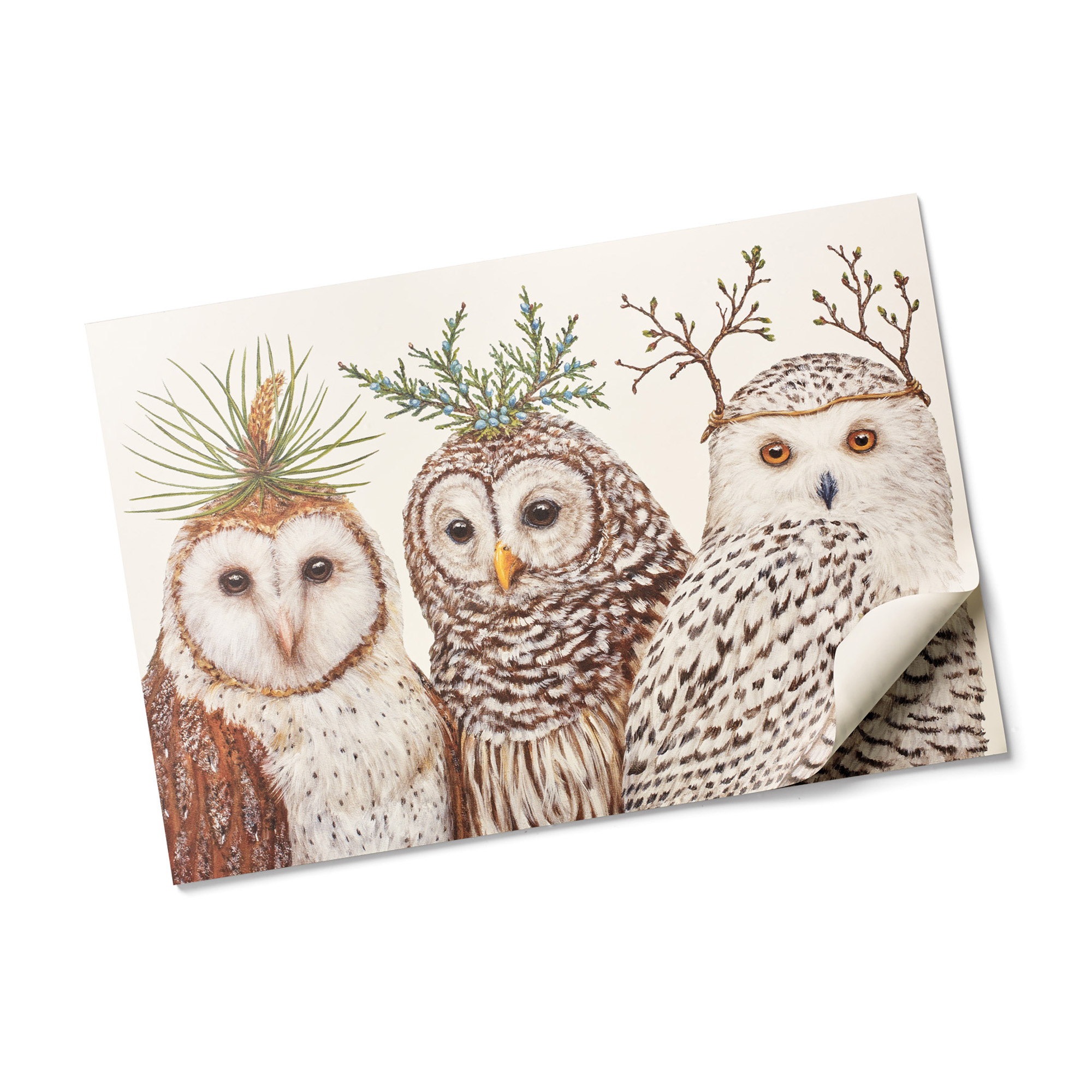 Owl Paper Placemats