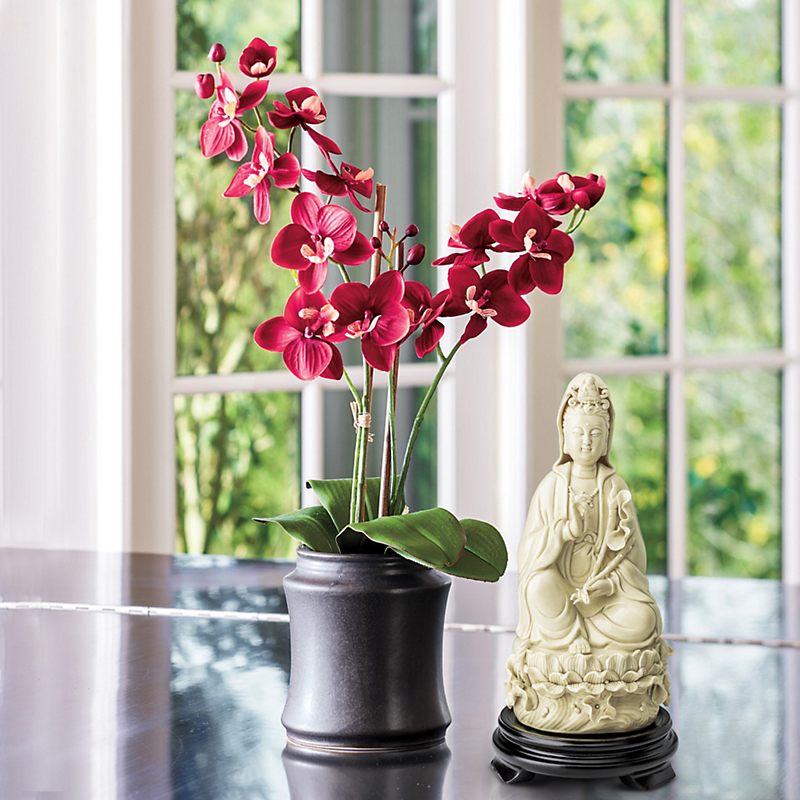 Double Phalaenopsis Orchid, Red