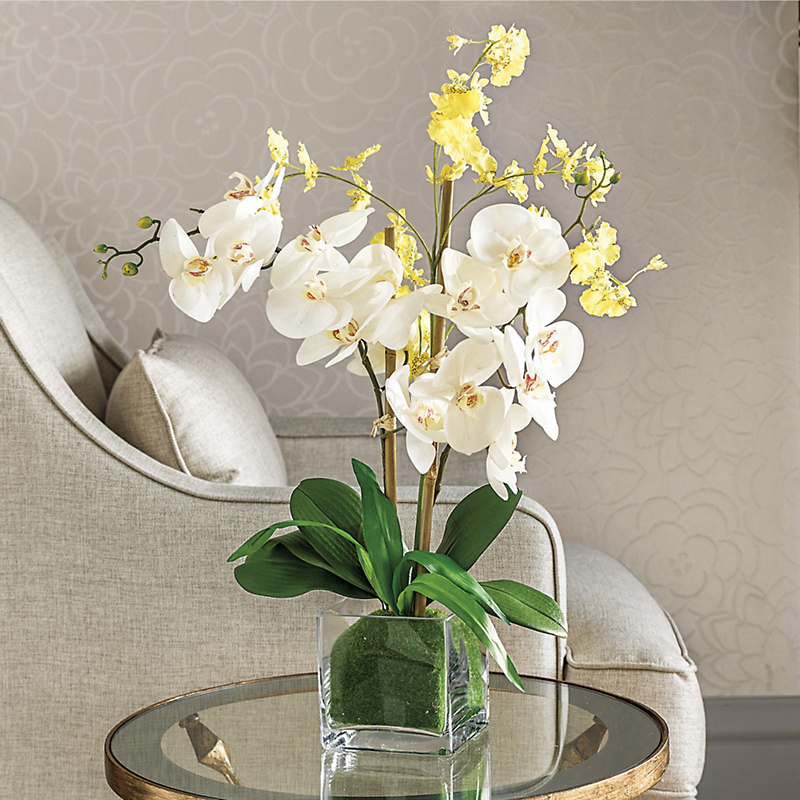 Double Phalaenopsis & Oncidium Arrangement