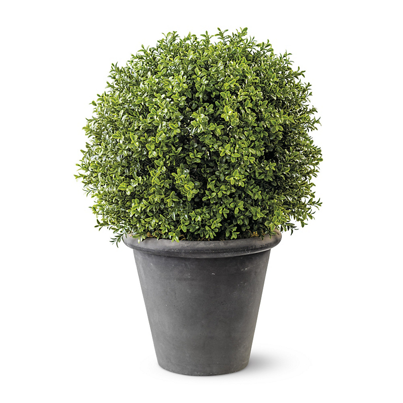 Windsor Faux Boxwood Topiaries, Single