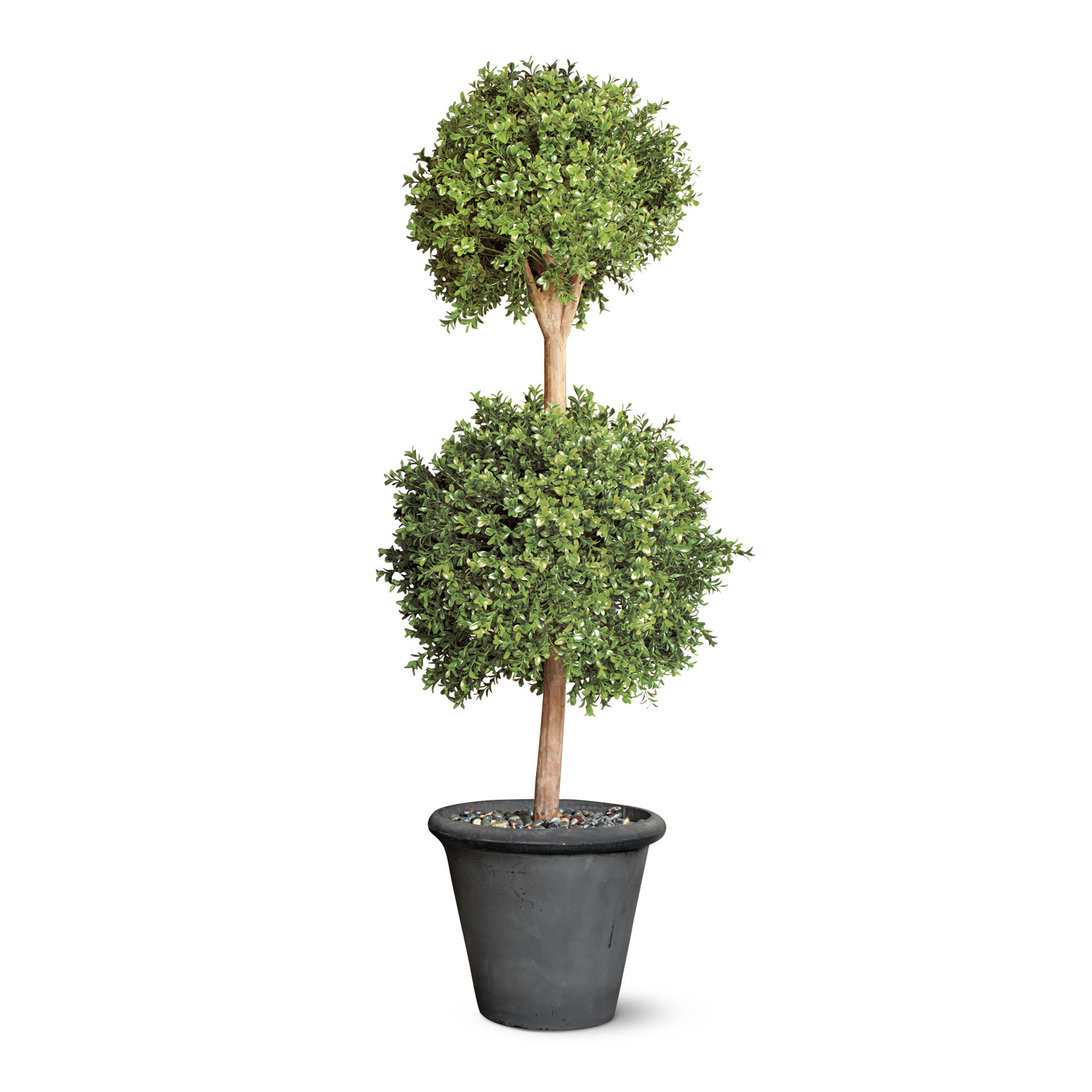Double Windsor Faux Boxwood Topiaries