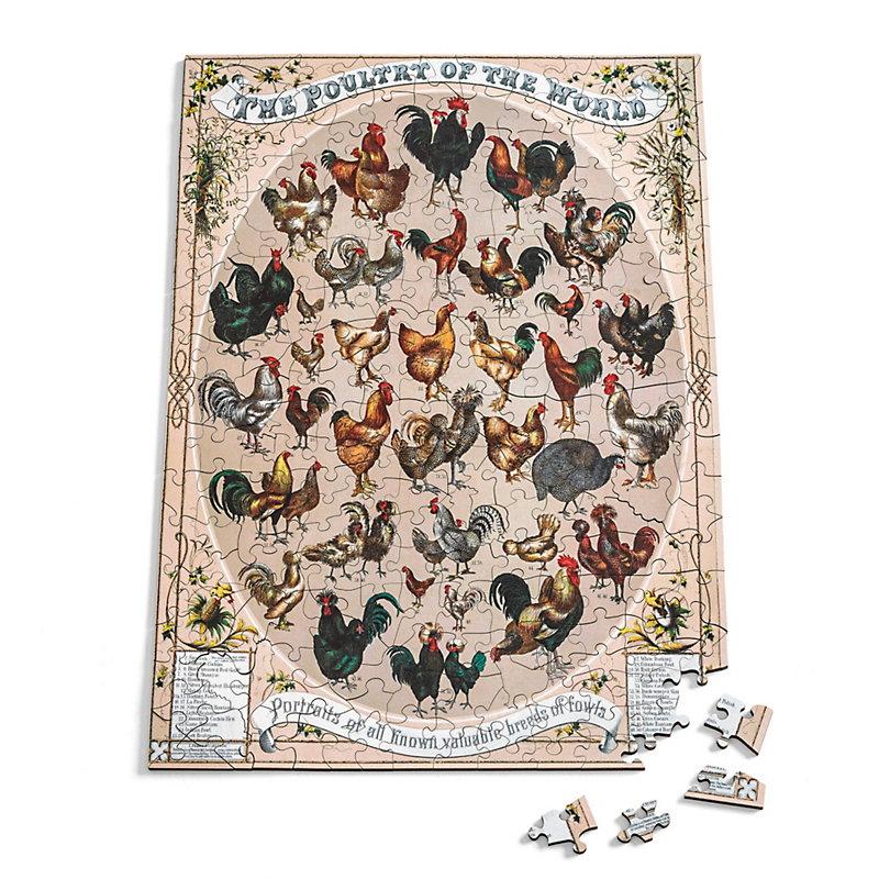 Poultry Of The World Puzzle