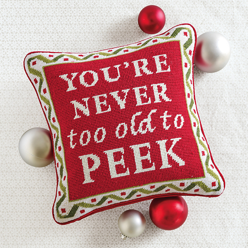 You're Never Too Old... Needlepoint Pillow