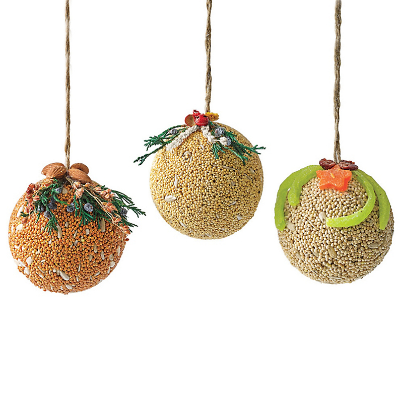 Birdseed Fruit Orbs, Set Of 3