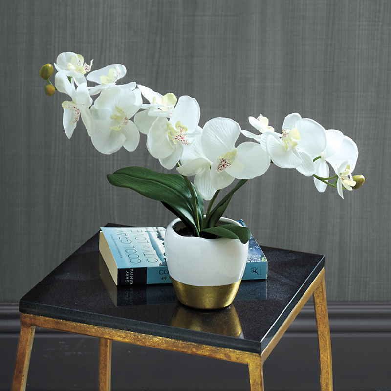 Serenity Orchid With White & Gold Container