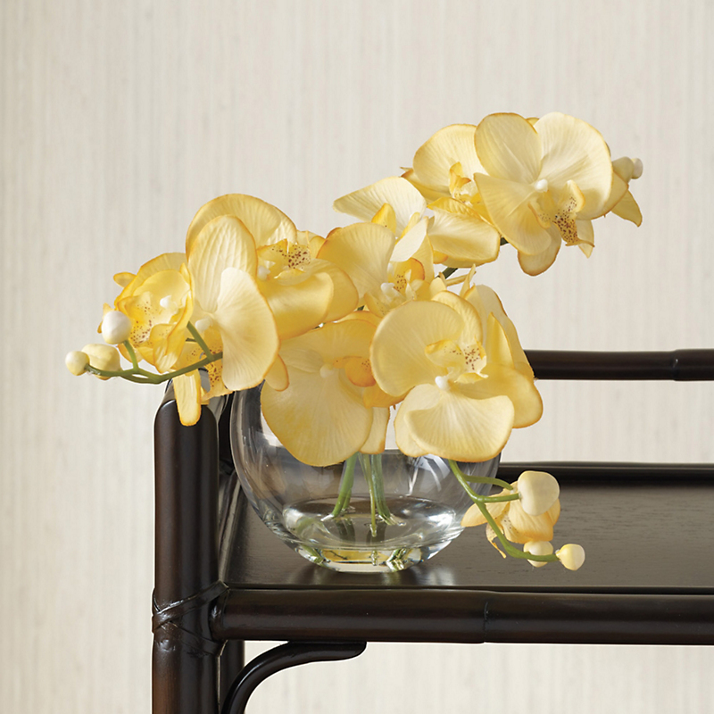 Yellow Cascading Orchid