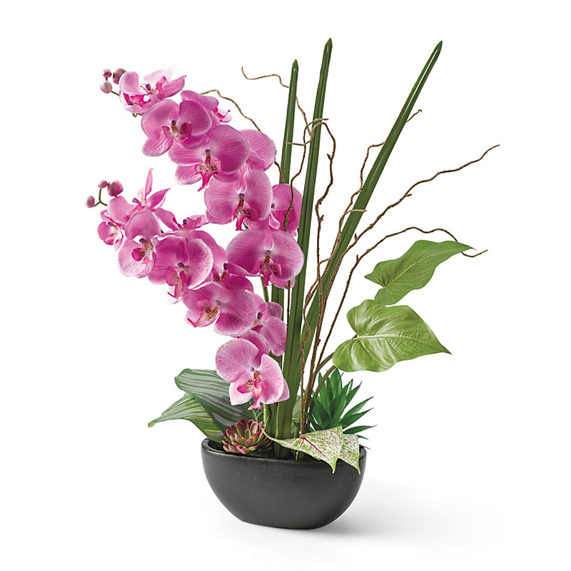 Enchanting Pink Orchid Arrangement