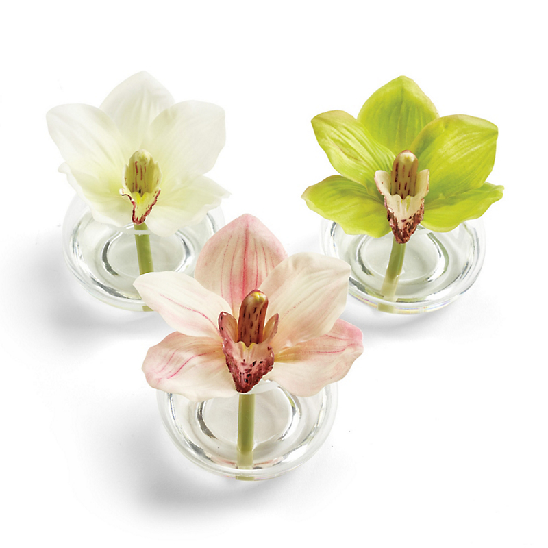 Mini Cymbidium Buds, Set Of 3