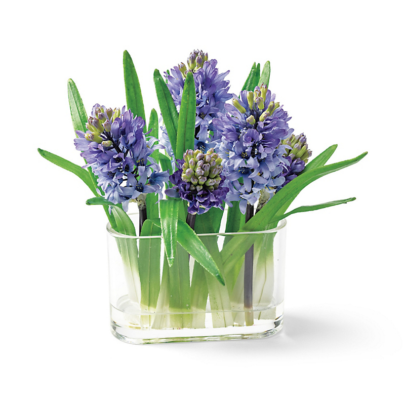 Purple Hyacinth Arrangement