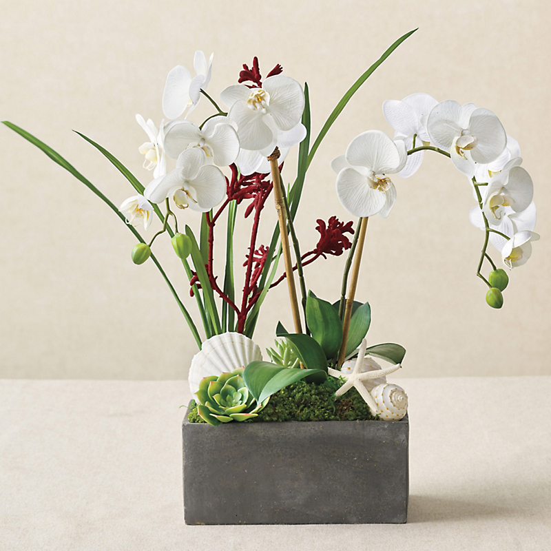 Mandalay Orchid & Shell Arrangement