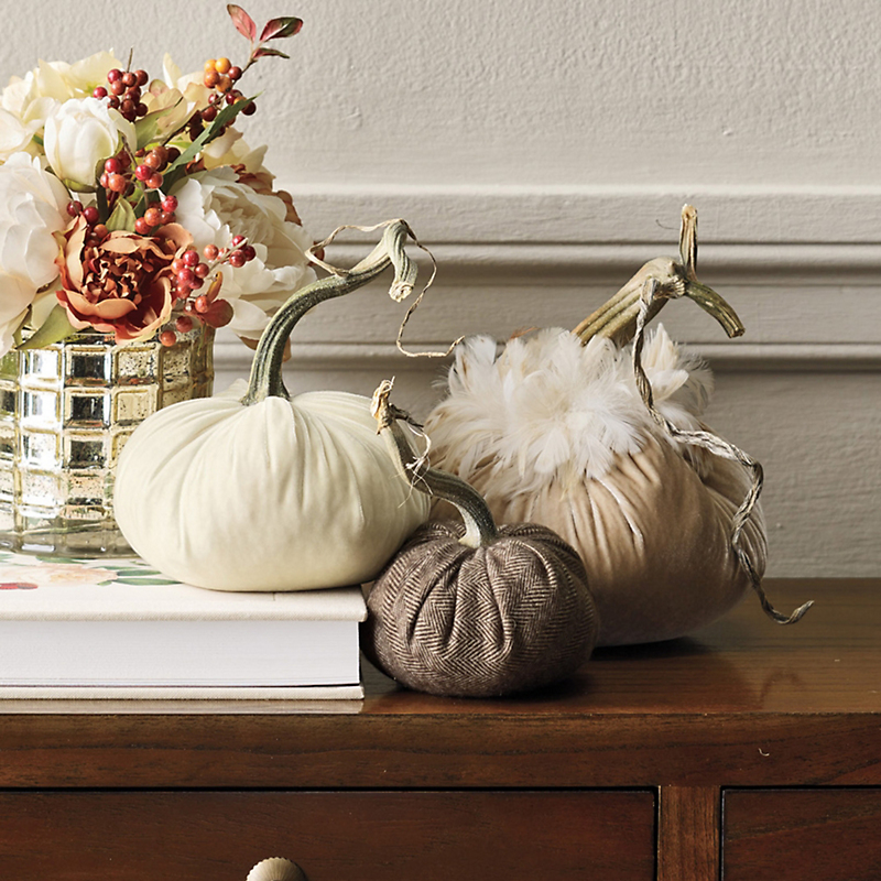 Neutral-Toned Velvet Pumpkins