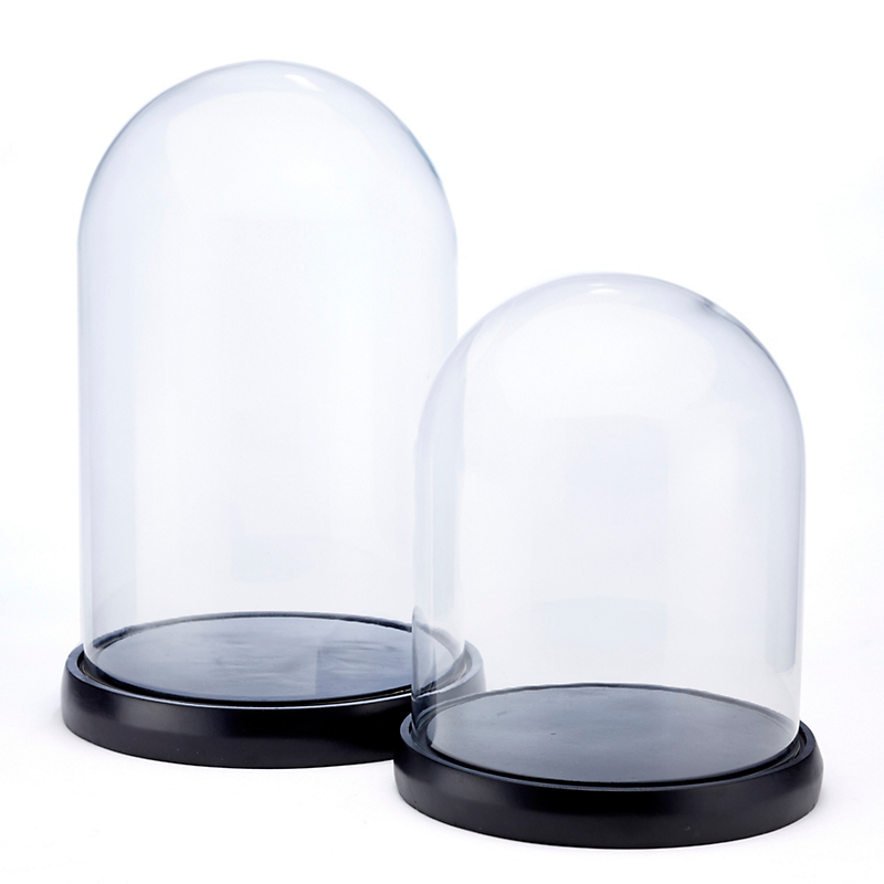 Glass Display Domes With Bases