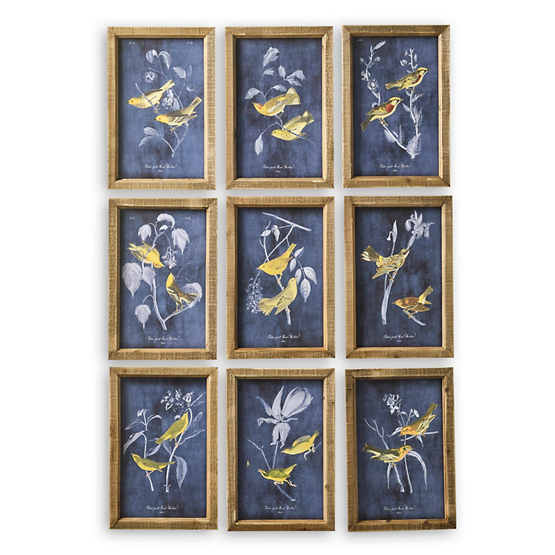 Bird Prints, Set Of 9