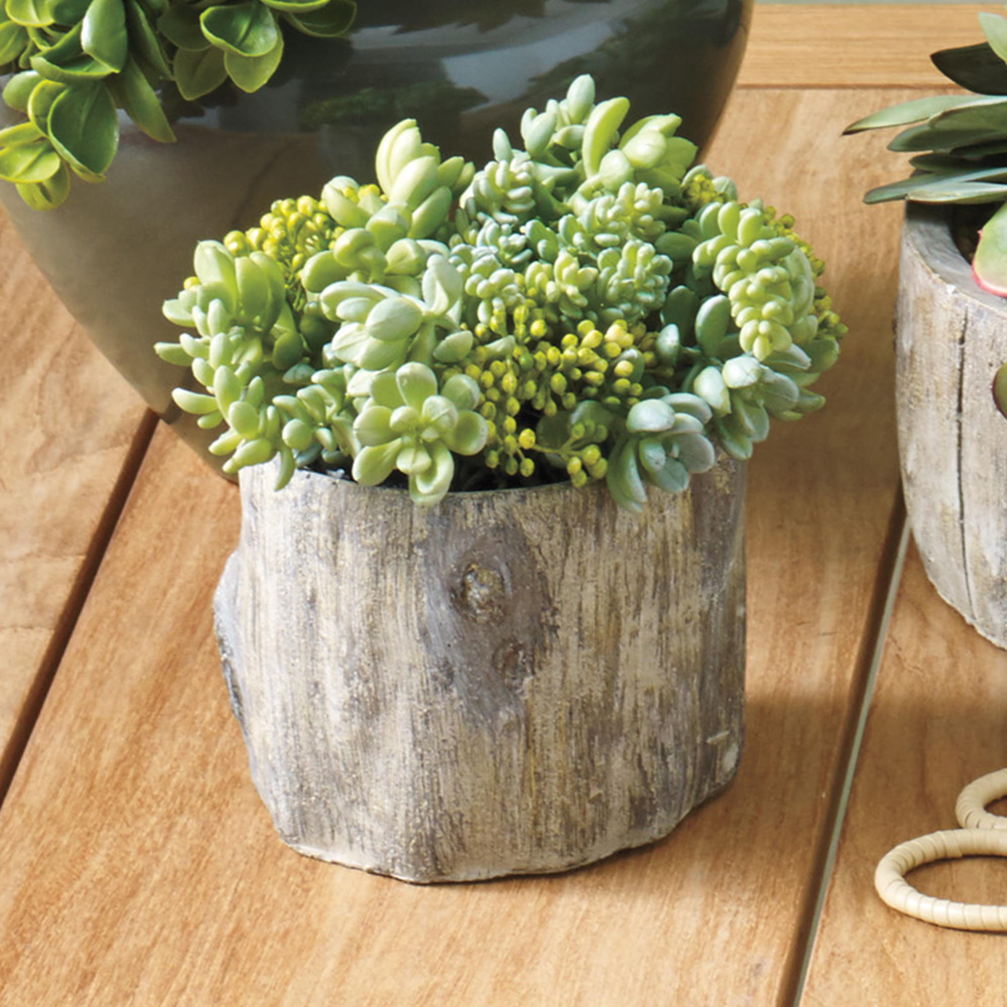 Sedum & Monkey Tail Succulent In Faux Bois Planter