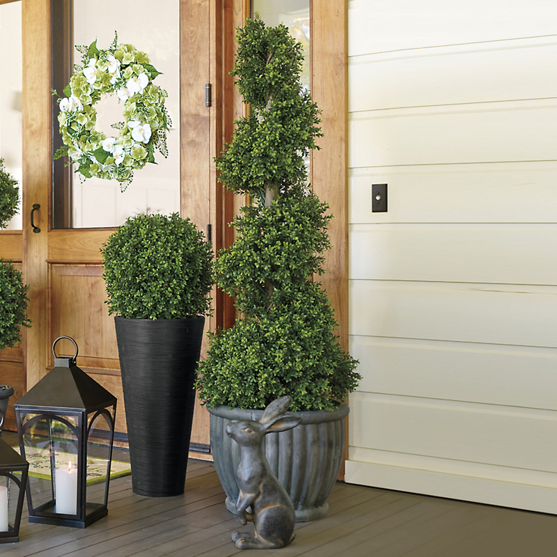 Spiral Windsor Boxwood Topiaries