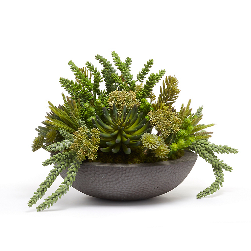 Grand Succulents in Hammered Bowl, Small