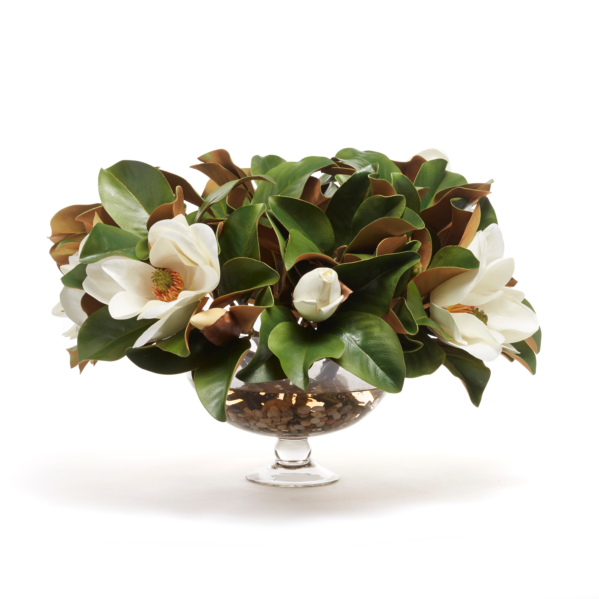 Grand Magnolia in Footed Vase