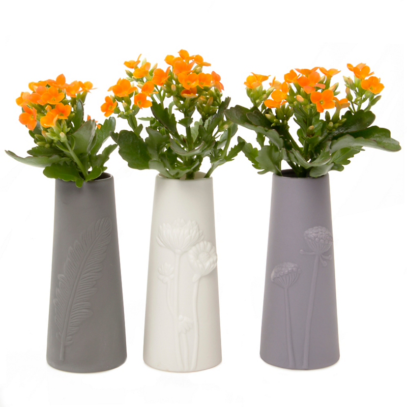 Ceramic Olmsted Vases, Set of 3