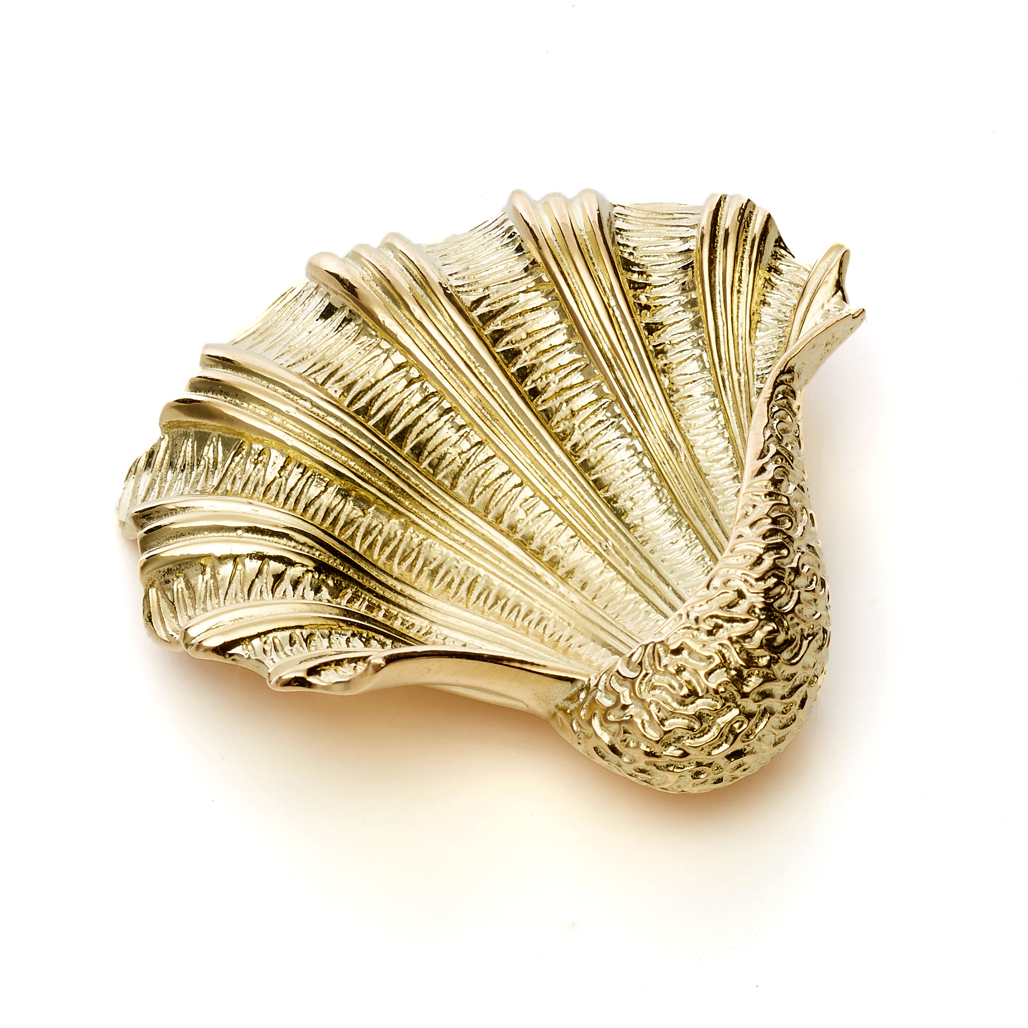 Large Shell Brooch