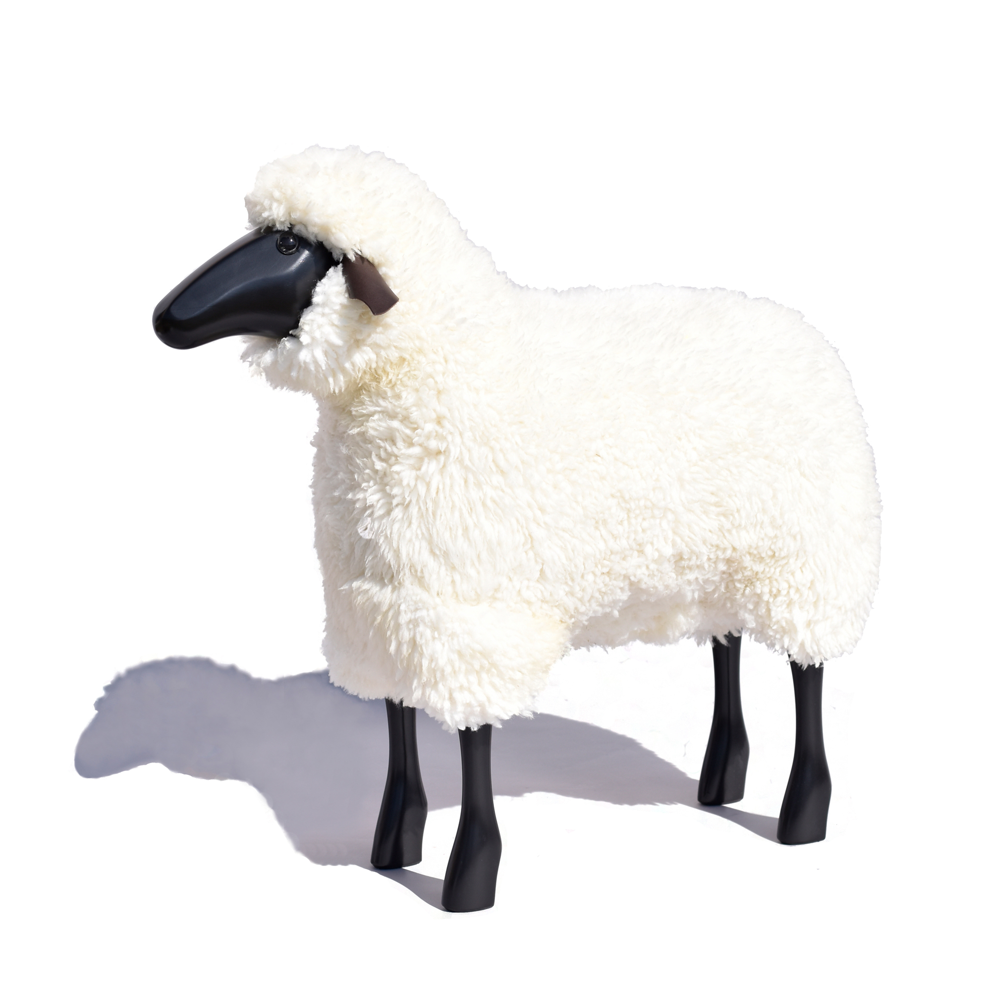 White Sheep